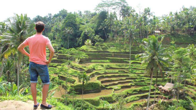 Vistas preciosas de las terrazas de arroz de Tegallaland
